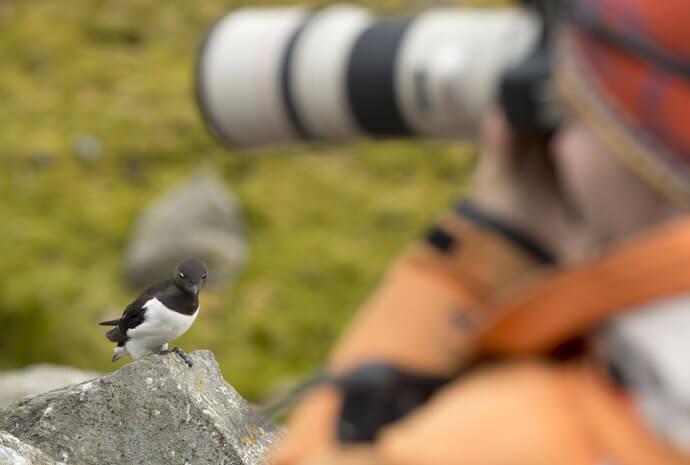 Spitsbergen Photographic Symposium 10 Days