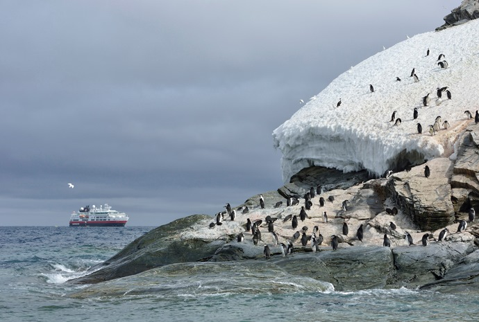 Chilean Fjords, Cape Horn, Antarctica & Falklands 18 days