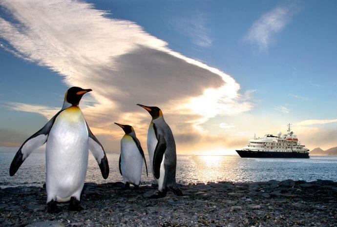 Wild Antarctica 14 days