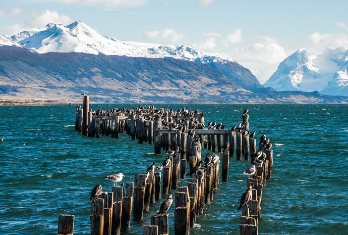 Chilean Fjords in Luxury 14 Days