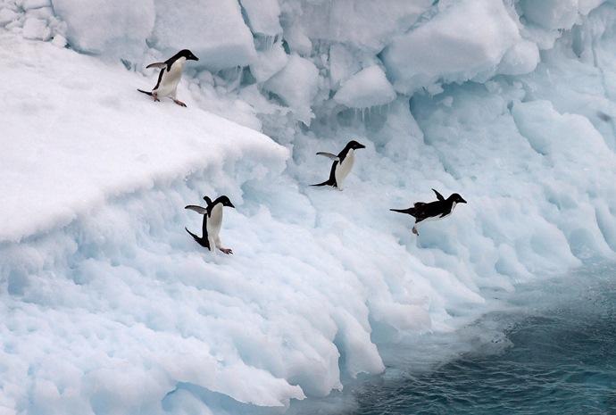Frozen Antarctic Adventure 13 days