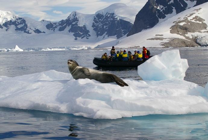 Spirit of Antarctica 11 days