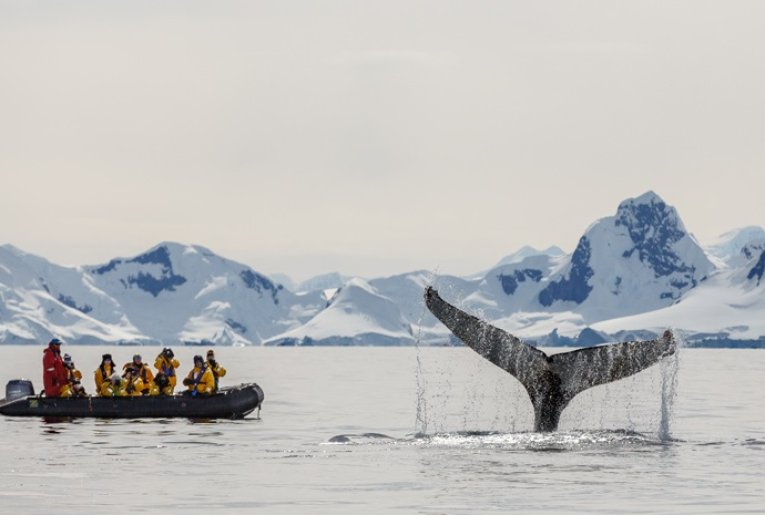 Antarctic Circle Express Fly/Cruise/Fly 11 days