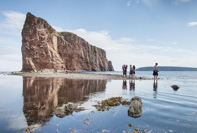 Canada's East Coast Wildlife Special 11 days