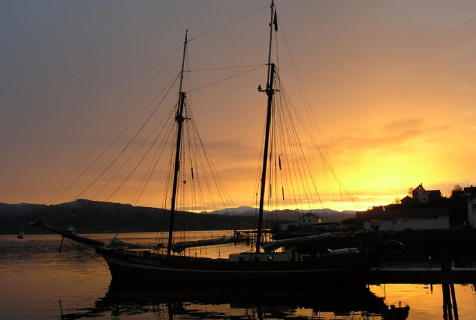 North Norway Sailing Ship Whale Safari with Northern Lights 8 days