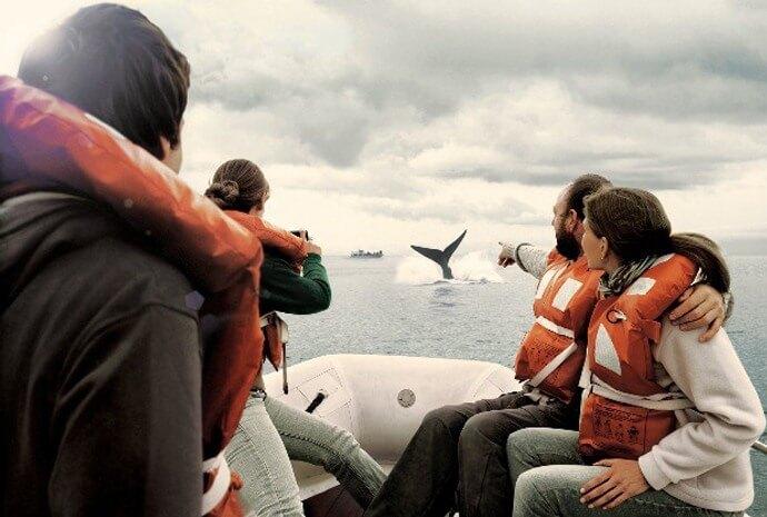 9 days Argentina + 11 days Antarctic Peninsula Expedition