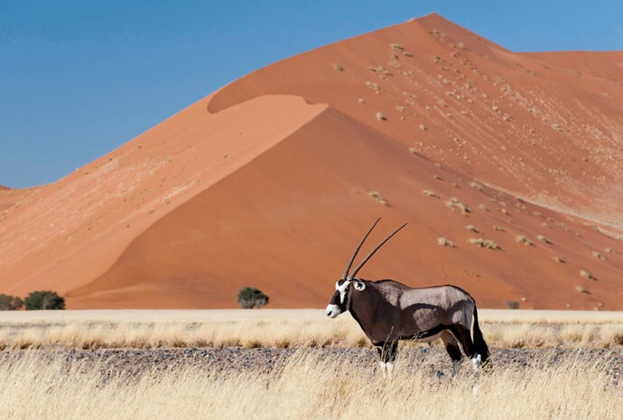 Classic Namibia Self-Drive 12 days