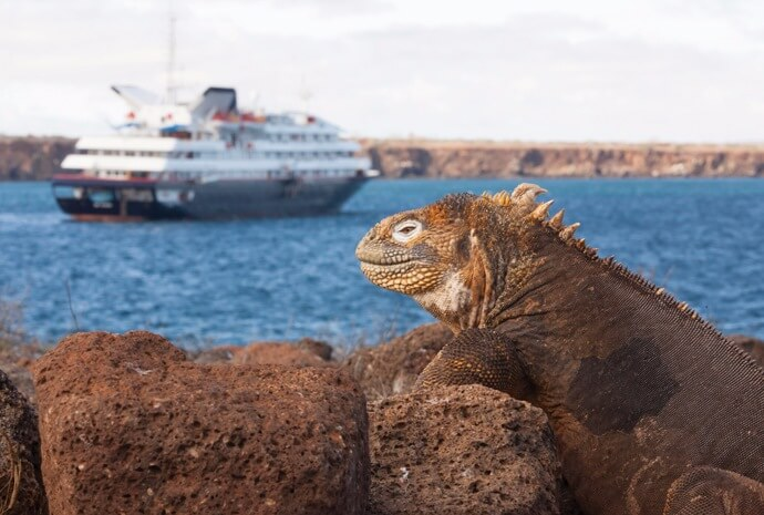 Western Galapagos in Luxury 10 days