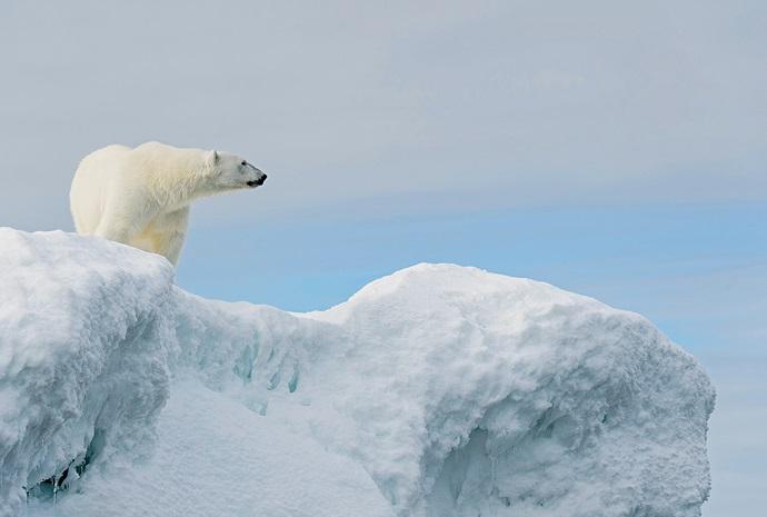 Iceland & Svalbard to Tromso in Luxury 15 days