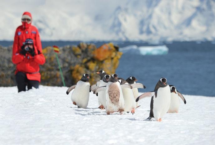 The Antarctic Peninsula in Luxury 11 days