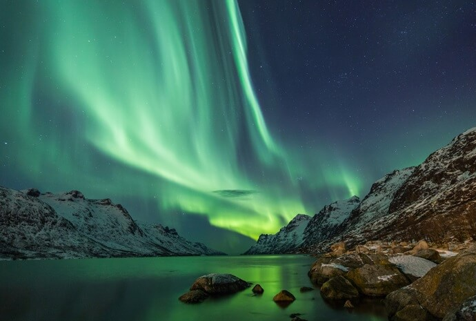 Norway Northern Lights & Whales by Sailing Ship 8 Days