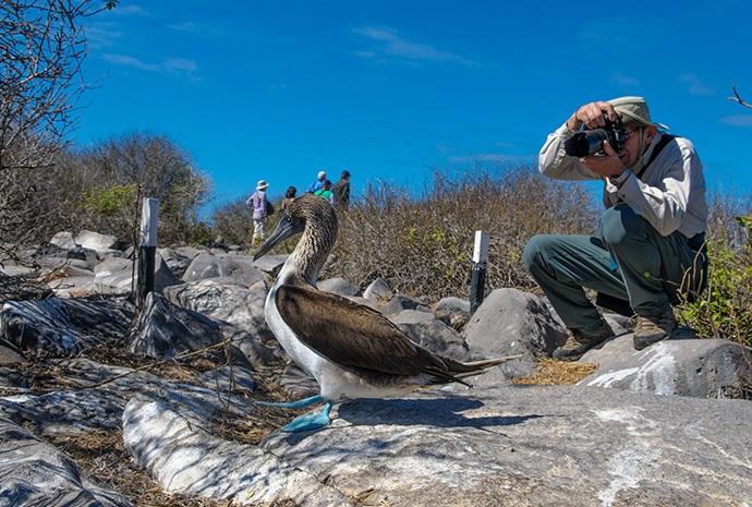 Galapagos Photography Special 13 Days