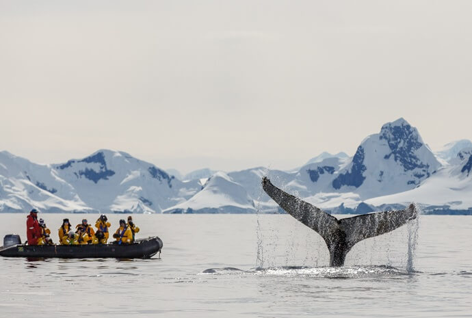 Antarctic Circle Express Fly/Cruise/Fly 11 days