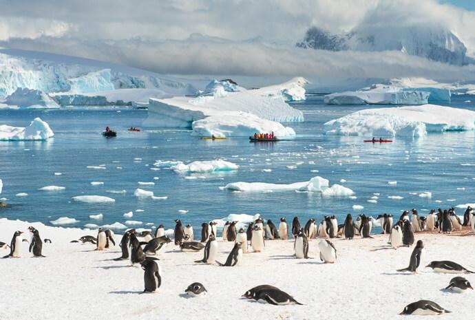New Year Antarctic Peninsula in Luxury 12 days