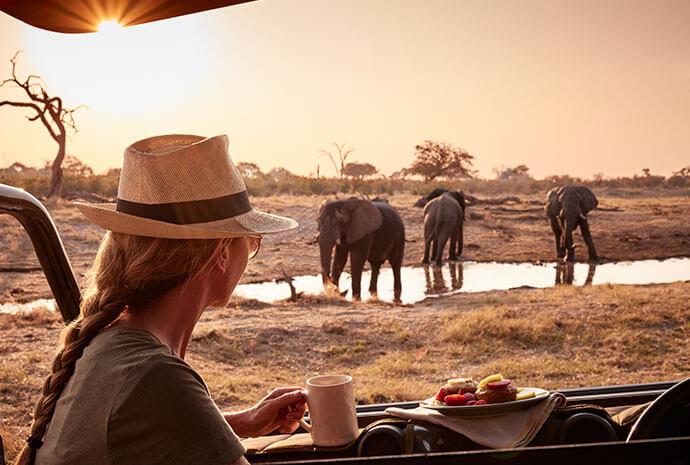 Luxury Botswana & Victoria Falls 10 Days